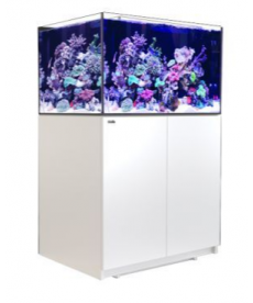 Red Sea REEFER XL 300 Wit