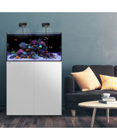 Waterbox All In One 35.2 White