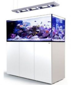 Red Sea Reefer Peninsula Deluxe P650 White 3 RL 160