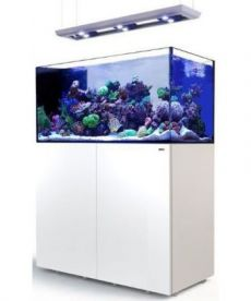 Red Sea Reefer Peninsula Deluxe P500 White 2 RL 160