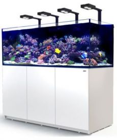Red Sea Reefer XL 750 Deluxe System White 3 RL 160