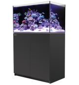 Red Sea Reefer 250 zwart