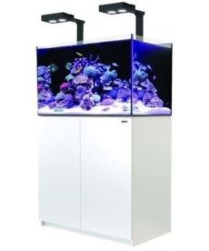 Red Sea Reefer 250 Deluxe wit 7290100776841