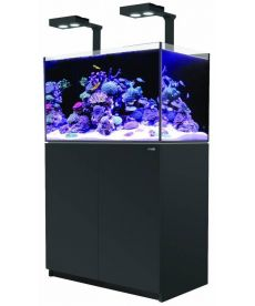 Red Sea Reefer 250 Deluxe zwart 7290100776834