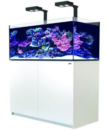 Red Sea Reefer 425 XL Deluxe - R42244
