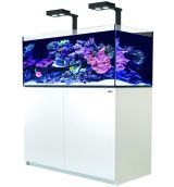 Red Sea Reefer 425 XL Deluxe wit
