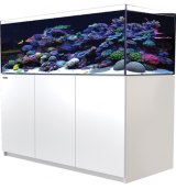 Red Sea Reefer 525 XL wit