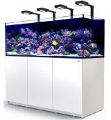 Red Sea Reefer 750 XXL Deluxe wit